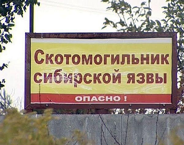 Прокуроры заставили чиновников Самарской области огородить сибиреязвенный скотомогильник | CityTraffic