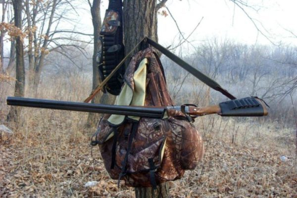 На лося и оленя разрешили охотиться все новогодние каникулы | CityTraffic