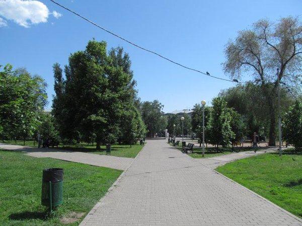 Самую крупную партию наркотиков в истории страны изъяли в Беларуси: видео | CityTraffic