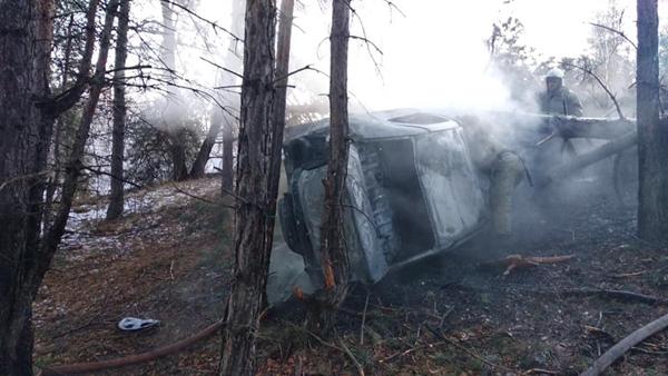 В Тольятти легковушка врезалась вдерево изагорелась
