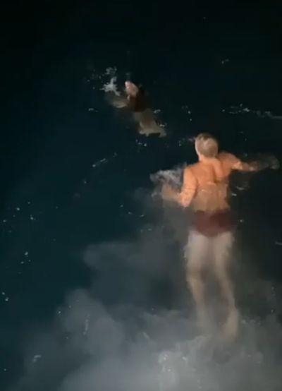 Рыбак из Австралии спас коалу, который упал в воду: видео | CityTraffic