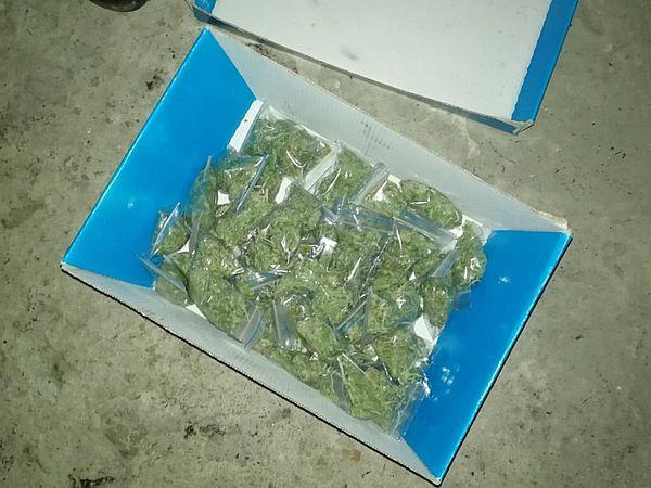 Житель Сызрани хранил в гараже 2 кг марихуаны для сбыта | CityTraffic