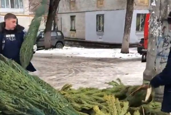 В Советском районе Самары незаконно торговали елками: видео | CityTraffic