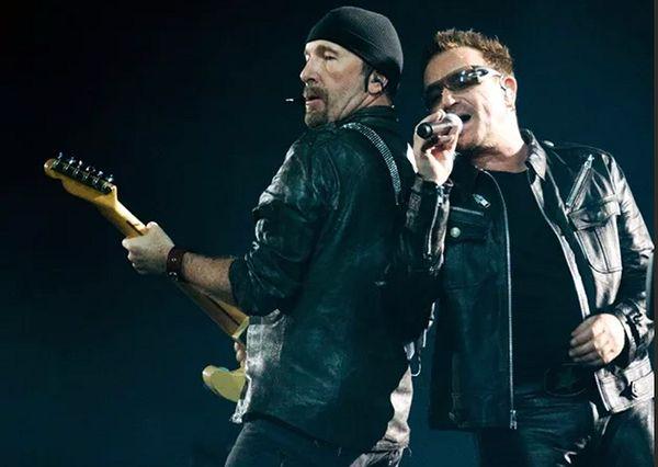 Кот бросается на хозяйку, как только слышит, что она насвистывает песни U2: видео