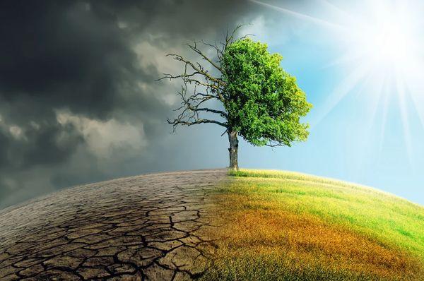 Правительство РФ утвердило план адаптации населения к изменениям климата | CityTraffic