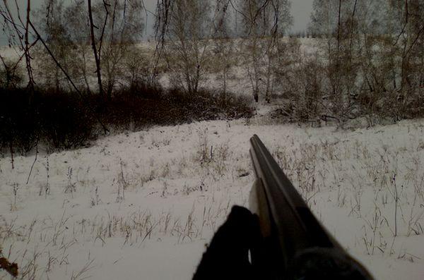 Браконьерам сорвали ночную охоту в Самарской области | CityTraffic