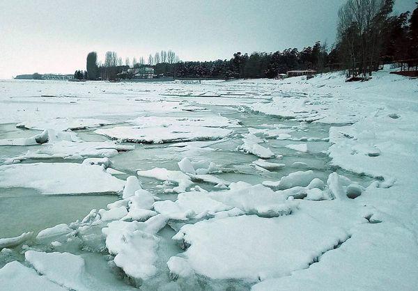 В аэропорту Курумоч уничтожили 165 кг молока и меда из Таджикистана и Узбекистана | CityTraffic