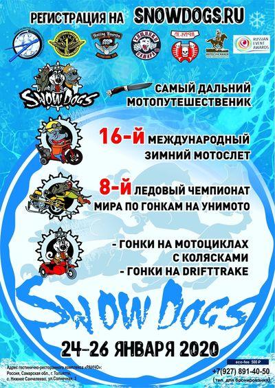 SnowDogs-2020 пройдёт в Тольятти | CityTraffic