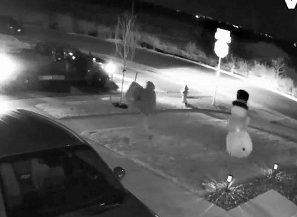 Снеговик бросился в погоню за вором, который похитил собачий корм: видео | CityTraffic