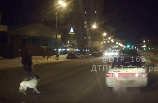 В Самаре сбитый пешеход и его собака от удара отлетели на 9 метров | CityTraffic