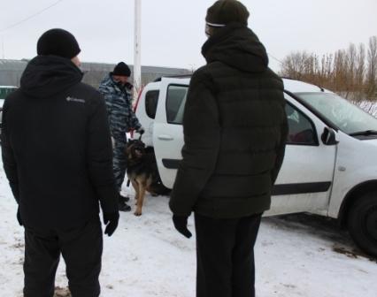 Собака Тинто из Тольятти нашла наркотики в машине жителя Жигулевска | CityTraffic