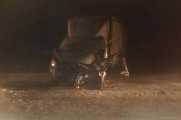 """Под Сызранью """"ГАЗель"""" столкнулась с грузовиком, вылетела в кювет и врезалась в дерево   CityTraffic"""