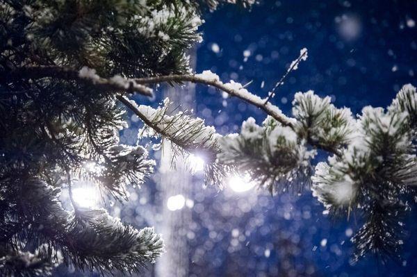 Снежная и пасмурная неделя ждет жителей Самарской области | CityTraffic