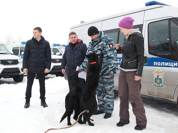 Собаки помогли раскрыть 15 преступлений транспортным полицейским в Самарской области   CityTraffic