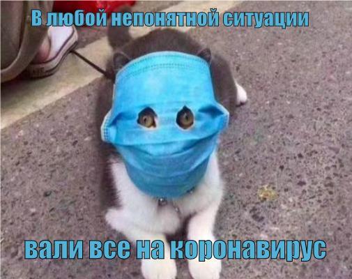 Чиновники Тольятти винят коронавирус в сдаче выставочного зала к юбилею АВТОВАЗа с недоделками | CityTraffic