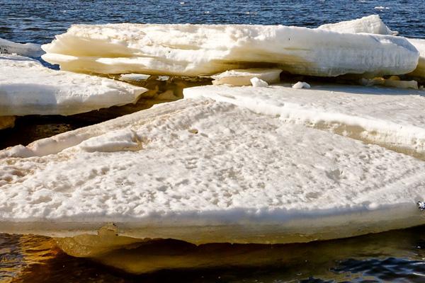В Тольятти на родителей, чьи дети бегали по льдинам на Волге, составили административные протоколы | CityTraffic