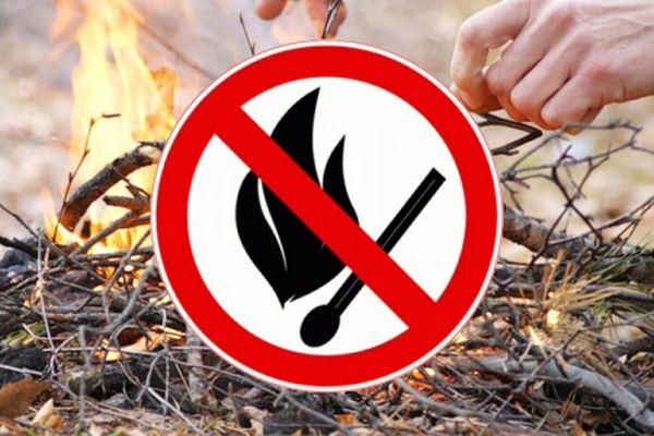 В Тольятти с 22 по 30 сентября вводится противопожарный режим | CityTraffic