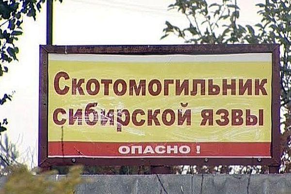 Скотомогильник с сибирской язвой в Самарской области обезопасили за 1,3 млн рублей | CityTraffic