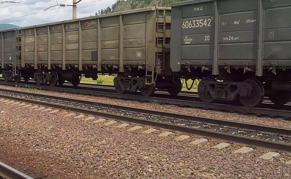 В марте в России из-за коронавируса вырос объем продовольственных товаров, перевозимых по железной дороге | CityTraffic