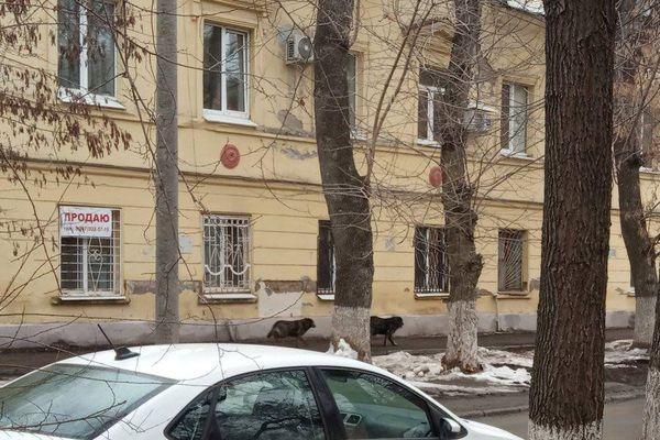 Расходы на ремонт причалов и речного вокзала в Самаре сократили на 32,9 млн рублей | CityTraffic