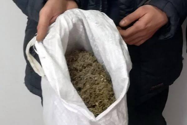 Житель Самарской области хранил марихуану в хозяйственной сетке | CityTraffic