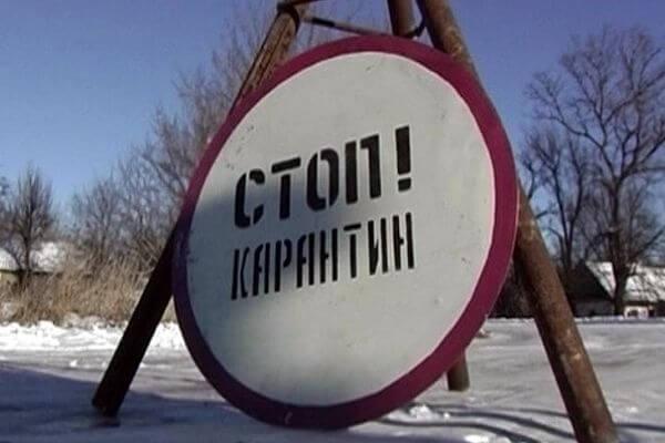 Еще в одном селе Самарской области установили карантин по бешенству | CityTraffic