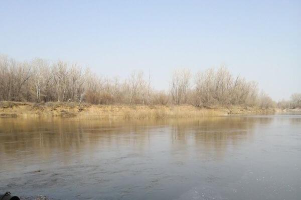 В Самарской области подтопило мост | CityTraffic