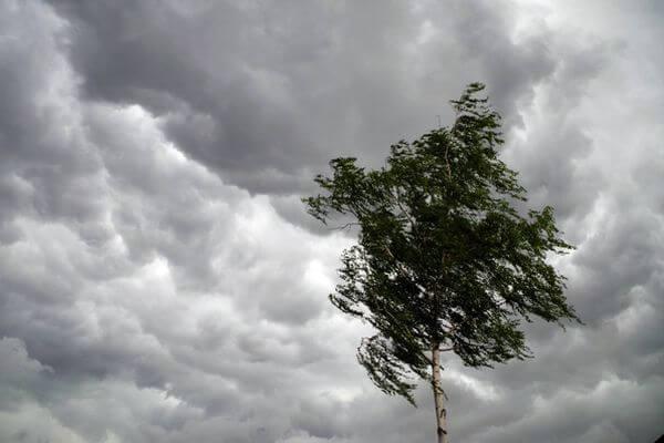 Спасатели предупреждают жителей Самарской области об усилении ветра | CityTraffic