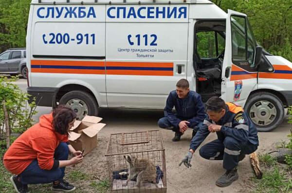 В Самаре 8 мая откроют восстановленный  центральный зал бункера Жукова   CityTraffic