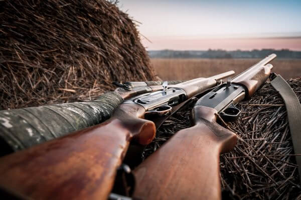 За неделю у охотников Самарской области отобрали 6 ружей | CityTraffic