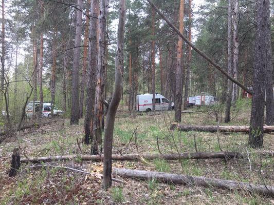 В Тольятти утром в субботу 23 человека тушили лесной пожар   CityTraffic
