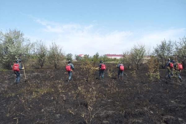 Под Самарой огонь от горящих жилых домов перекинулся на сухой камыш   CityTraffic