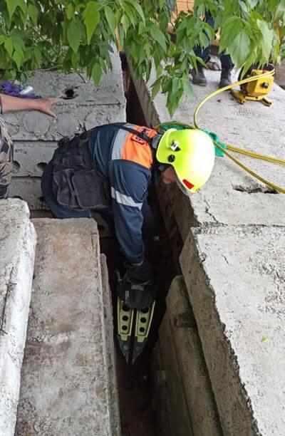 В Тольятти спасли собаку, застрявшую между бетонных плит | CityTraffic