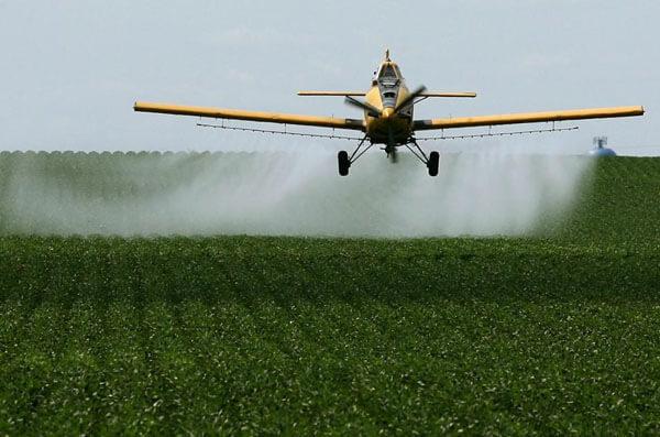 Можно ли с самолета распылять пестициды над фермерскими участками, если они находятся в черте города | CityTraffic