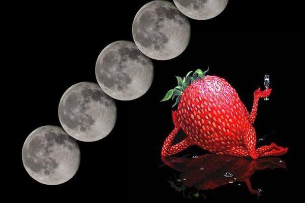 Вечером в четверг над Землей взойдет Клубничная Луна, а в воскресенье с неба польется звездный дождь | CityTraffic
