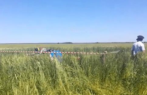 Самолетом ЯК-52, который разбился в Самарской области, управлял курсант второго года обучения | CityTraffic