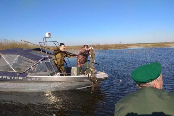 Во время нерестового периода 150 кг рыбы и раков было возвращено на волю в Самарской области | CityTraffic