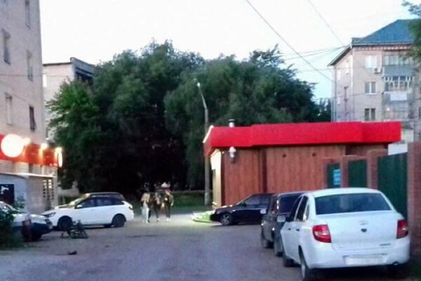 В Тольятти ищут водителя, которых сбил троих человек и скрылся | CityTraffic