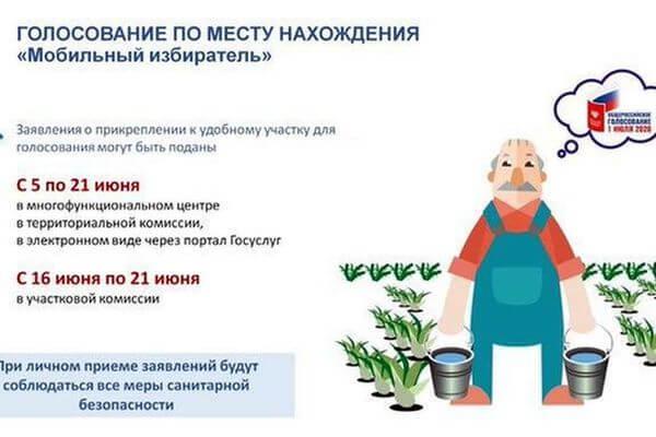 В Самарской области начали работать пункты приема заявок для голосования по поправкам кКонституции РФ по месту нахождения