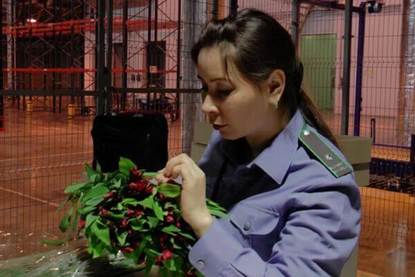 В Самарской области сняты ограничения на поставку цветов   CityTraffic