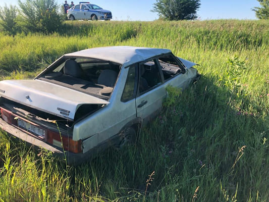 Охотников из Самарской области оштрафовали на 50 тысяч рублей за то, что они не отстрелили 8 кабанов | CityTraffic