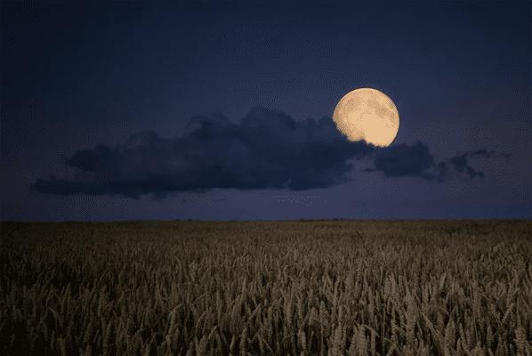 В начале сентября над Землей взойдет Кукурузная Луна | CityTraffic
