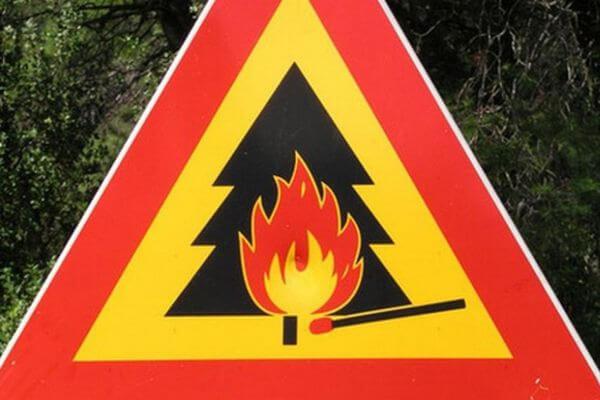 В Самарской области объявлен 4 класс пожароопасности лесов | CityTraffic