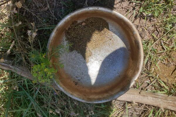 Житель Самарской области жарил коноплю на костре, когда его нашла полиция | CityTraffic