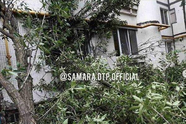 В Самаре порывом ветра дерево зашвырнуло в квартиру | CityTraffic
