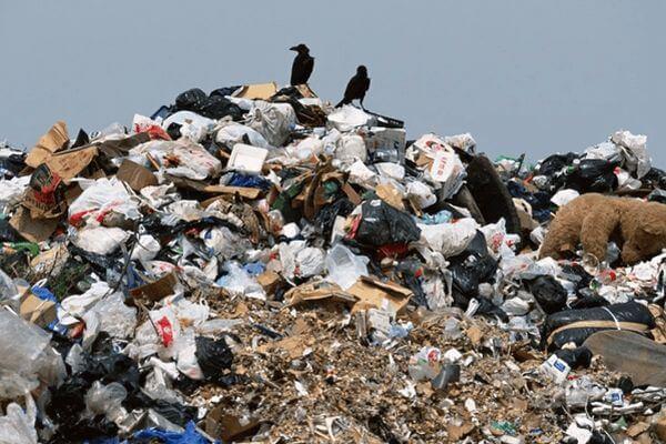 Директор фирмы из Самарской области закопал мусор на 1,3 млн рублей | CityTraffic