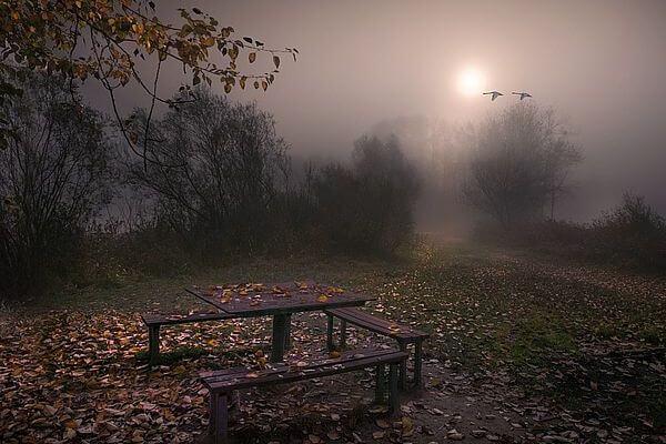 Выходные в Самарской области начинаются с тумана | CityTraffic
