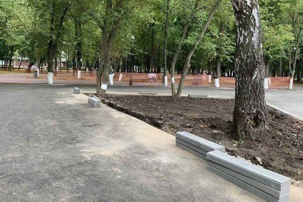 О размещении картинга в парке Гагарина в Самаре спросят горожан | CityTraffic