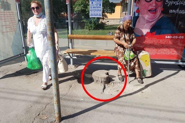 Жители Самары пожаловались на пень, который торчит посреди автобусной остановки | CityTraffic