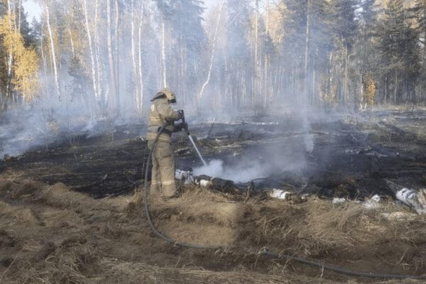 В 11 муниципалитетах Самарской области введут  режим угрозы возникновения ЧС из-за пожаров | CityTraffic
